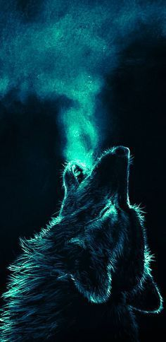 Wolf Wallpaper by - 70 - Free on ZEDGE™ now. Browse millions of popular animal Wallpapers and Ringtones on Zedge and personalize your phone to suit you. Browse our content now and free your phone Wallpaper Lobos, Tier Wallpaper, Trendy Wallpaper, Iphone Wallpaper Wolf, Animal Wallpaper, Galaxy Wallpaper, Animal Totem Loup, Wolf Background, Wolf Craft