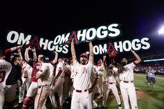 The Photos: Calling The OmaHogs | Arkansas Razorbacks Arkansas Baseball, Razorback Baseball, Arkansas Razorbacks, Woo Pig Sooie, University Of Arkansas, Tampa Bay Rays, Alma Mater, Bays, Let It Be