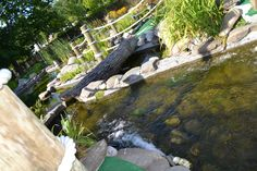 Courtesy of HF Photography Garden Bridge, Waterfall, Golf, Outdoor Structures, Mini, Photography, Photograph, Fotografie, Waterfalls