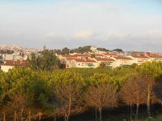 La Muntayeta, al fondo el Hotel Castillo, Sant - Boi