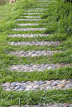 As pedras por serem de fácil manutenção, são uma ótima alternativa para caminhos de jardins, as opções são inúmeras e vão de seixos de rio, seixos brancos, pedricos e pisantes.