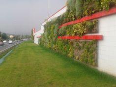 Realizzazione verde verticale - CC Il continente - Mapello (BG)