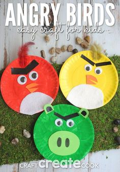 Kids will love this easy and cute Angry Birds paper plate craft!