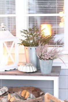 ensilumi, talvikoti, piha ja puutarha, talvipuutarha, winter garden, snow