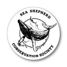 Sea Shepherd: Another great charity to give to on behaf of little ones.