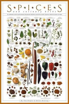 Spices and Culinary Herbs Kunstdruck