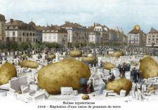 Suisse mystérieuse, 1918, Explosion d'une usine de pommes de terre