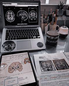 School Organization Notes, Study Organization, Medicine Student, Study Board, Medical Careers, School Study Tips, Med School, Study Notes, Study Motivation