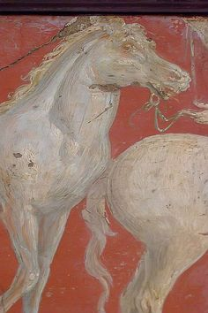 Roman fresco of a horse recovered from Vesuvian Ash in Stabiae 1st century BCE-1st century CE (9)