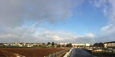 雨降りでも気温が高めな朝。晴れ間に虹が。