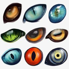 A bunch of dragon eyes for refrence.Random types of animal eyes.Love all these different creature eyes.Oh my god this is sooooo cute I actually have a hard time looking at it! So I believe in fairies, the myths, dragons. Fantasy Creatures, Mythical Creatures, Design Reference, Art Reference, Animal Drawings, Art Drawings, Wolf Drawings, Drawing Animals, Drawings Of Eyes