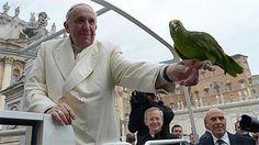 Revista elogia papa por defesa do meio ambiente