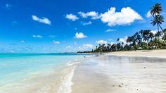 Praia dos Carneiros, Brazil by Magerson Bilibio - Photo 147192051 - 500px