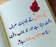 Here Explore the Top Best Love Quotes in Urdu for your beloved, Always stay happy and stay inspired. Special Love Quotes, Love Quotes In Urdu, Love Poetry Urdu, Best Love Quotes, Romantic Love Quotes, Good Life Quotes, Poetry Quotes, Wisdom Quotes, Urdu Quotes
