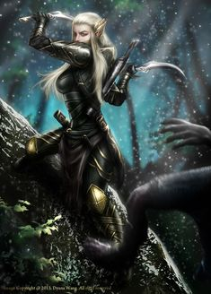 Dark elves with knives...there's just something graceful about dark elves with knives...
