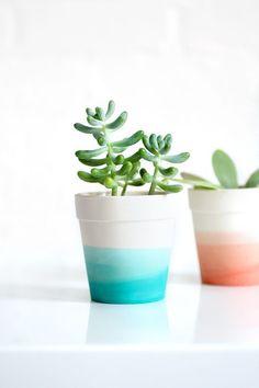 dip dye succulent pot via i spy diy Painted Plant Pots, Painted Flower Pots, Succulent Planter Diy, Succulents Diy, Succulent Outdoor, Outdoor Pots, I Spy Diy, Fleurs Diy, Terracotta Pots