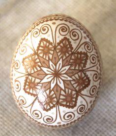 Brown chicken egg, acid etching.