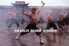 Wu Tang Collection: Shaolin Blood Mission