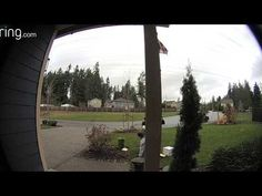 Package Thief Gets Instant Karma Instant Karma, Fail Video, Funny Videos, Packaging, Wrapping