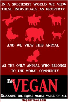 Veganism is a social justice movement, recognize the equal moral value of all #vegan
