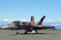 Le CF-18 Hornet de démonstration de 2015 attend sur l'aire de trafic de Comox, en Colombie-Britannique, où l'équipe se prépare à la saison des spectacles aériens. Son schéma de couleurs et de marques extérieures de 2015 rend hommage aux Canadiens qui ont servi lors de la bataille d'Angleterre, il y