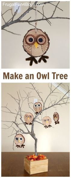 Owl Craft - How to make adorable wood slice owl ornaments. Love the tree idea! Fall decor that kids can help make. by olga