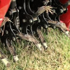 Best Time to Aerate Lawn