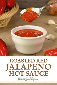 Roasted Red Jalapeño Hot Sauce - Do you love adding little heat to your food? Then try this mildly spiced roasted red jalapeño hot sauce recipe. Hot Sauce Recipes, Real Food Recipes, Keto Recipes, Vegetarian Recipes, Healthy Recipes, Red Jalapeno, Jalapeno Recipes, Roasted Jalapeno Hot Sauce Recipe, Jalapeno Sauce