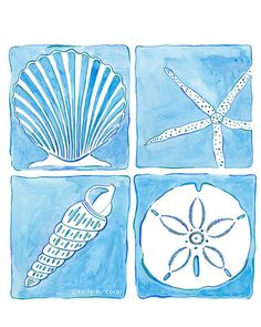 Beach Art  Seashell Collection by IslandofBlue @ Etsy