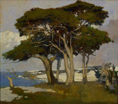 Monterey Cypress Arthur Mathews