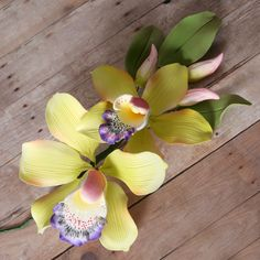 Large Cymbidium Orchid Sprays - Pink | CaljavaOnline