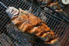 [생활 꿀팁] 만능 살림꾼 '식용 베이킹소다' 활용법 6가지 : 1)건강하게 과일ㆍ채소 씻기, 2)깔끔한 생선요리 3)식기세척 4)미백치아관리 5)각질제거 피부관리 6)윤기좔좔 애완동물 털관리