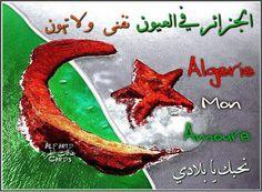 الجزائر في العيون نفنى و لا تهون   el djazair fi el 3oyoun nafna w la tahoun نحبك يا بلادي algerie mon amour  بمناسبة ذكرى الفاتح 1 نوفمبر ، ذكرى الثورة الجزائرية الخالدة  أجمل تحية للجزائر و شعب الجزائر #AlaaDinHarabiDesign , #AlaaDinHarabi  for more designs visit us: www.facebook.com/AlaaDinHarabiOfficial www.instagram.com/AlaaDinHarabi www.youtube.com/AlaaDinHarabi www.twitter.com/AlaaDinHarabi www.AlaaDinHarabi.com
