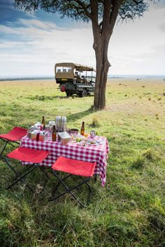 the lovely angama mara in the maasai mara Leeks And Carrots Recipe, Yotam Ottolenghi, Ottolenghi Recipes, Picnic Lunches, Mexica, Good Burger, Nigella, Creamy Chicken, Tray Bakes