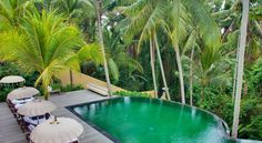 Book Komaneka At Rasa Sayang Ubud Hotel, Ubud, Bali. Members of ABTA. Beautiful Hotels, Beautiful Places, Ubud Bali Hotels, Boutiques, Popular Holiday Destinations, Bali Lombok, Bali Holidays, Tropical Pool, Cruise Destinations
