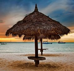 Aruba - Palm Beach Coast