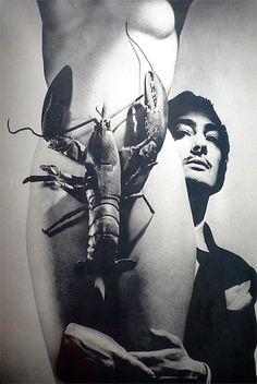 Zippertravel #DrStyle Dali-lobster