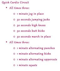 quick cardio circuit == will probably increase the duration of the first set of cardio exercises from 30 seconds to minute.  Will also add front kick + back kick to the second set of exercises.   Boot Camp!