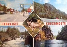 Eiks oo hieno? Är det int' härligt? Finland, Seasons, Nature, Food, Naturaleza, Seasons Of The Year, Essen, Meals, Nature Illustration