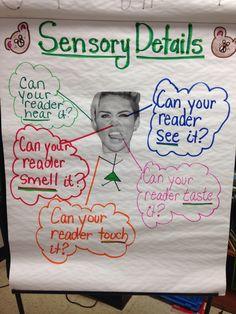 Sensory Details for writing descriptions.