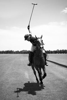 Find images and videos about horse, ralph lauren and Polo on We Heart It - the app to get lost in what you love. Malbec, Polo Horse, Le Polo, Polo Classic, Classic Style, Sport Of Kings, Ralph Lauren, Polo Club, Marco Polo