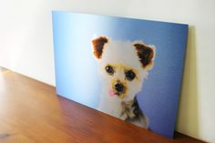 Aluminum Custom Pet Photos Your Image Printed by PhotoMediaDecor Pet Photos, Your Image, The Incredibles, Printed, Pets, Unique, Handmade Gifts, Animals, Vintage