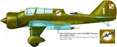 PZL.23B, 64 Eskadra Liniowa, 6 Pulk Lotniczy, Serial: 1, September 1939. Artist: © Anatoli.F.Ignatiy.