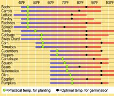 When is it warm enough to plant?The best temperatures for starting seeds   gardeners.com