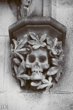 Architectural Detail with Skull and Leaves.