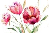 Drie Tulpen bloemen, aquarel illustratie photo