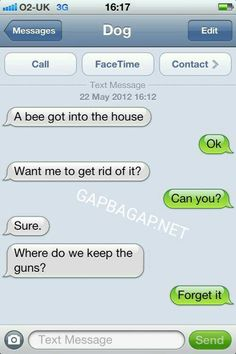 Hilarious Text About Funny Dog vs. Bee