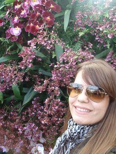 A maior exposição de Orquídeas dos EUA | Flores de Lulu