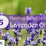 5 Healing Benefits of Lavender Oil