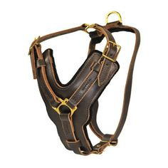 Victory leather dog harness from Dean & Tyler